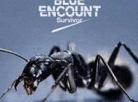 この画像は、サイトの記事「BLUE ENCOUNT 『Survivor』 PV・MV・メイキング YouTube無料音楽動画ご紹介」のイメージ写真画像として利用しています。